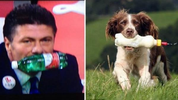 Após se irritar em jogo, técnico da Inter de Milão é comparado a cachorro nas redes sociais