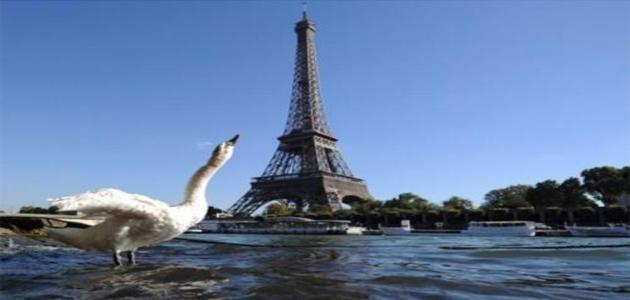 Marca registrada de Paris, Torre Eiffel completa 125 anos nesta segunda (31)