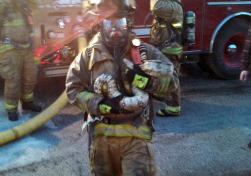 Bombeiros salvam cobra de 1,8 m de casa em chamas nos Estados Unidos