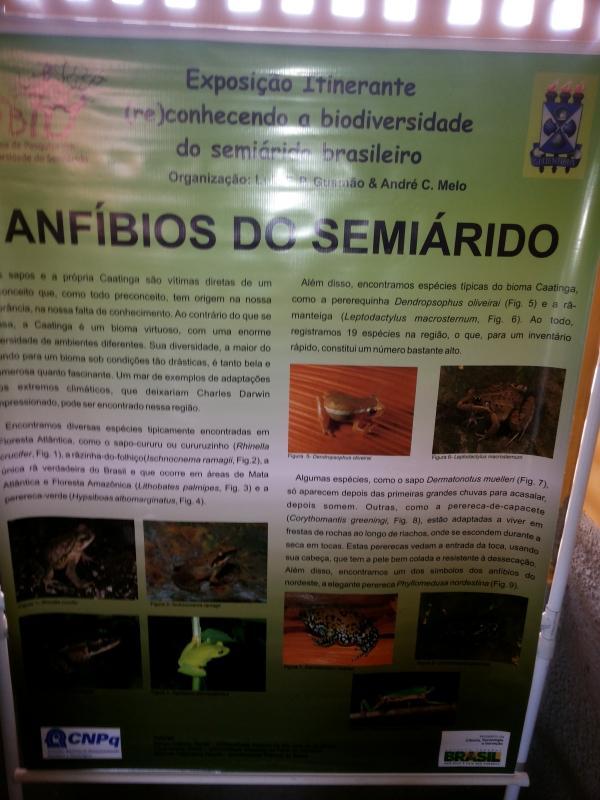 Seminário (re)conhecendo a biodiversidade do semiárido brasileiro  - Imagem 22