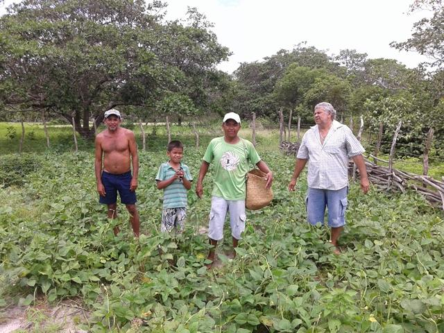 Projetos para Agricultura Familiar são apresentados neste fim de semana pela Secretaria de Agricultura