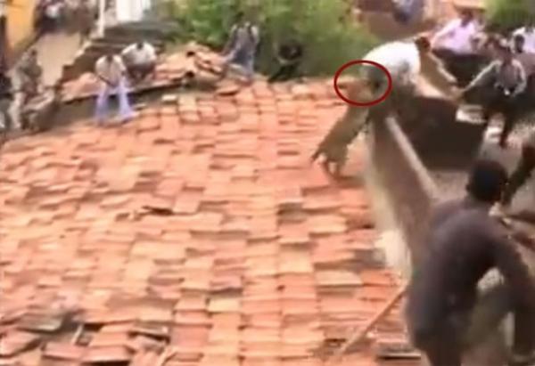 Homem leva mordida nas nádegas ao tentar expulsar leopardo na Índia