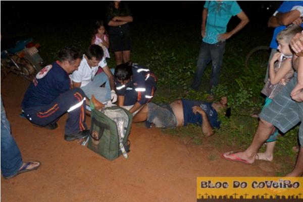 Animal na estrada provoca mais um acidente em Cocal