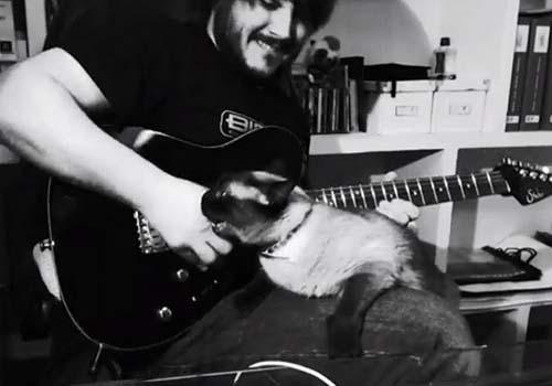 Guitarrista filma