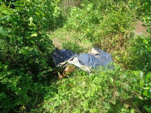 Corpo de lavrador é encontrado no meio da mata em estado avançado de decomposição e putrefação