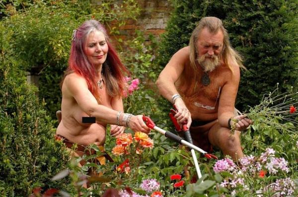 Jardineiros peladões põem