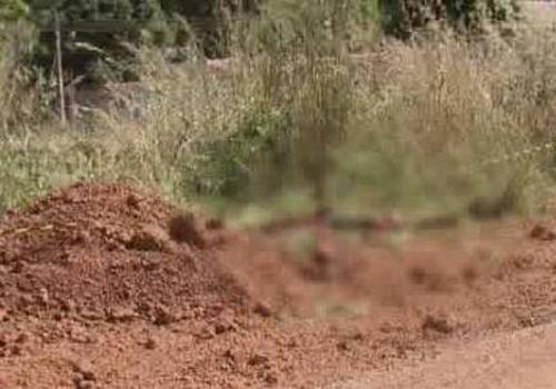 Mulher é assassinada a pauladas pelo companheiro no Entorno do DF