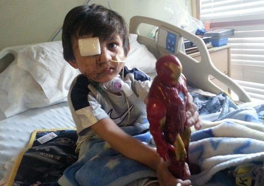 Juíza condena Pit Bull a prisão perpétua após ataque em criança