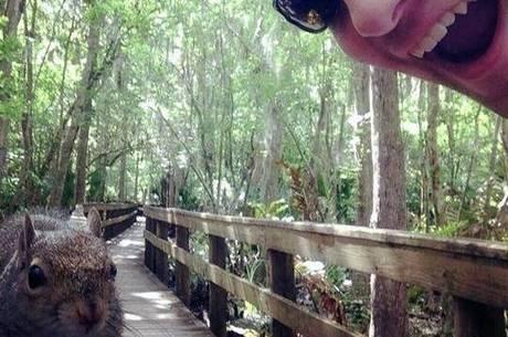 Selfie com esquilo termina em agressão em parque na Flórida