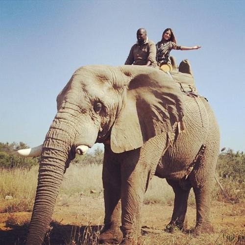Carol Castro posta foto andando de elefante na África do Sul