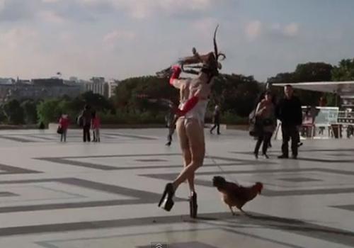 Vídeo mostra artista sul-africano dançando com galo preso ao pênis