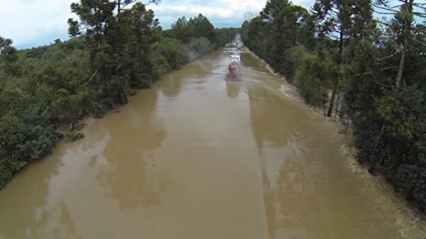 Produtores do Paraná calculam os prejuízos provocados pela chuva