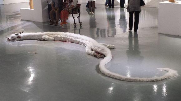 Dragão ferido intriga internautas na China