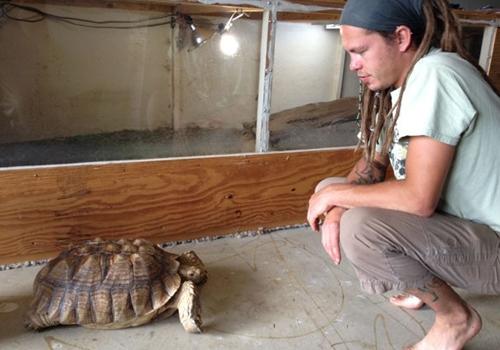 Americano oferece até recompensa e acha tartaruga de estimação sumida