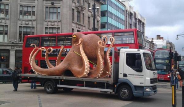 Caminhão transportando polvo gigante quebra e causa tumulto no trânsito de Londres