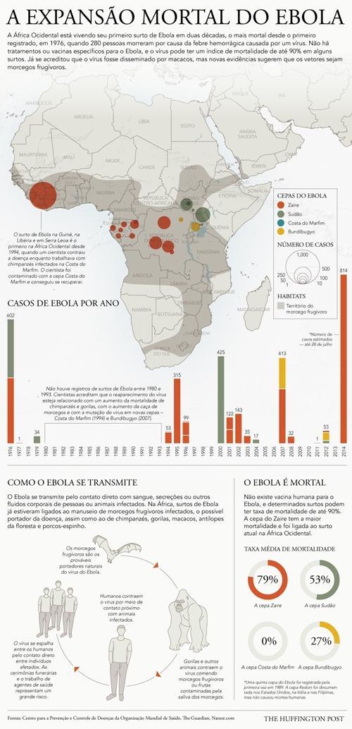 Táxis, aviões e vírus: saiba como o vírus Ebola pode se espalhar