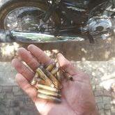 Assaltante é morte durante assalto e troca de tiros  da Agência de Santo Inácio-PI