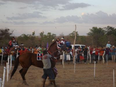 19ª Corrida de Cavalo