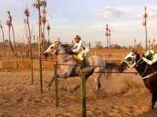 CL Ranch: Juazeiro foi palco de uma das maiores competições de Corrida de Cavalo do Piauí.
