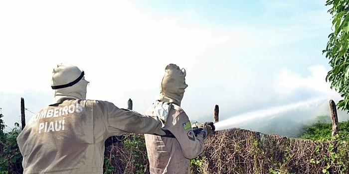 Incêndio atinge área de 200 hectares no litoral do PI e assusta moradores