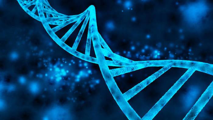 Manipulação de DNA (Crédito: Divulgação )