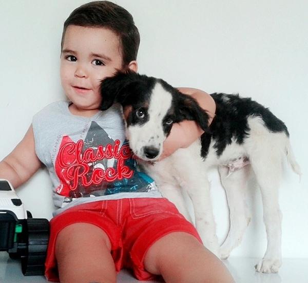 Cachorro era grande amigo do pequeno (Crédito: Reprodução)