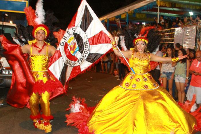 Desfile das seis  escolas de samba empolga público na Avenida Marechal Castelo Branco - Imagem 8