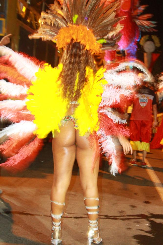 Desfile das seis  escolas de samba empolga público na Avenida Marechal Castelo Branco - Imagem 6