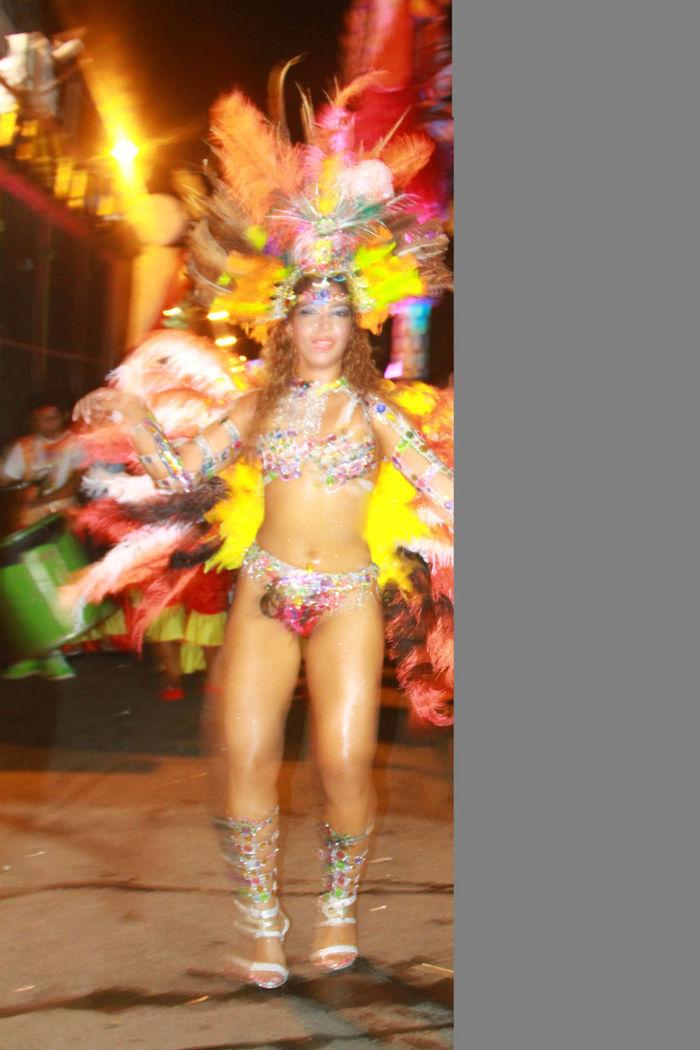 Desfile das seis  escolas de samba empolga público na Avenida Marechal Castelo Branco - Imagem 7