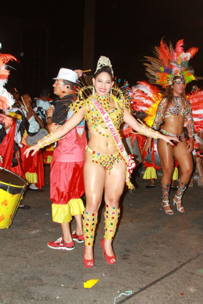 Desfile das seis  escolas de samba empolga público na Avenida Marechal Castelo Branco - Imagem 11