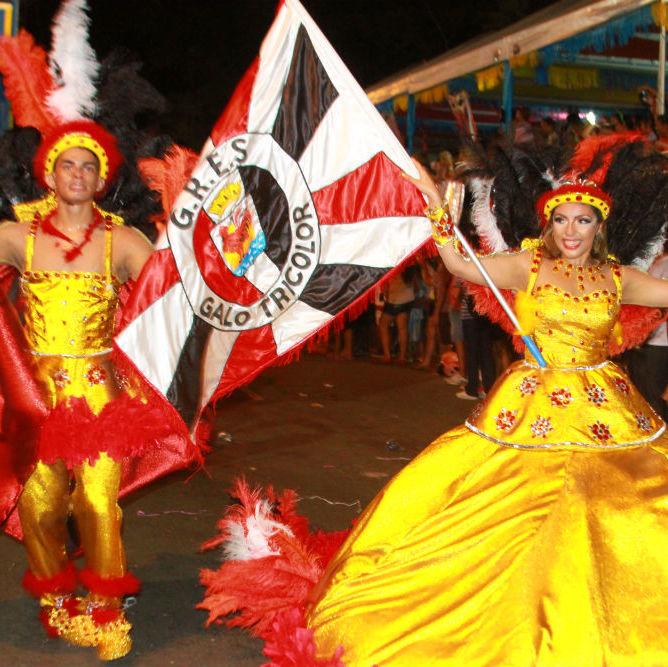 Desfile das seis  escolas de samba empolga público na Avenida Marechal Castelo Branco