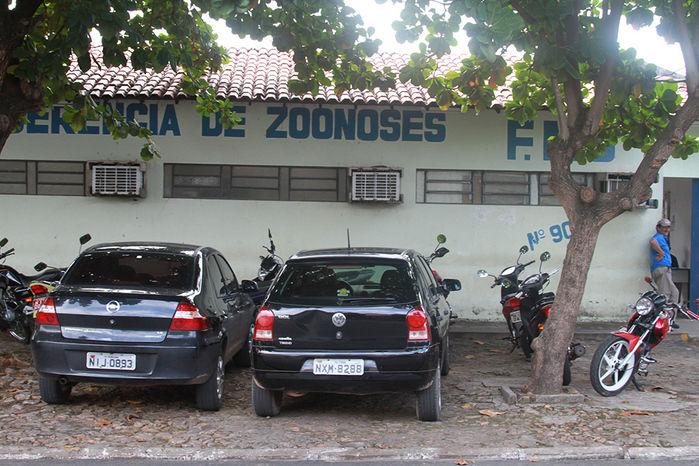 Maus-tratos a animais no Centro de Zoonoses são denunciados em Teresina - Imagem 1