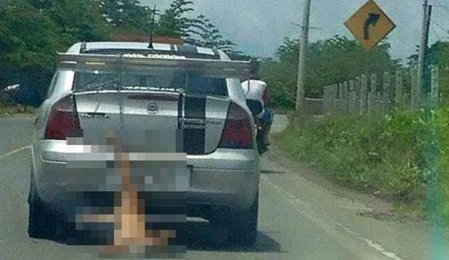 Foto de cão arrastado por carro causa revolta na web - Imagem 1