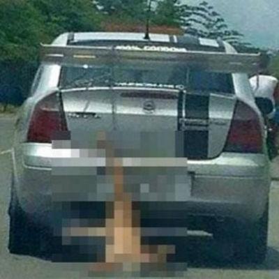 Foto de cão arrastado por carro causa revolta na web