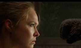 Campeã Ronda Rousey vive cena inusitada em luta com panda, vídeo