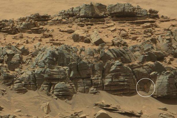 NASA divulga foto de suposto caranguejo em Marte, será alienígena?