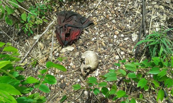 Ossada humana encontrada na zona Sul de Teresina