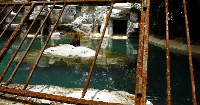Zoológico do Rio é efchado após péssimas condições de funcionamento