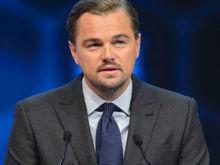 Ator Leonardo DiCaprio doa US$ 15 milhões para projetos ambientais