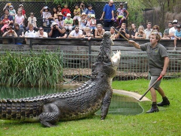Atração em parque na Austrália