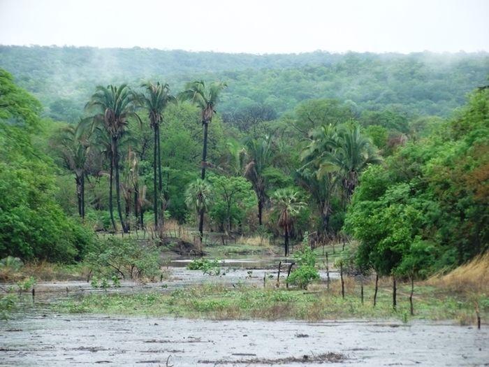 Barragem do Riacho dos Cocos (Crédito: José Carlos da silva)