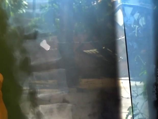 Homem foi internado em MT para retirar bala da coluna e saiu do hospital sem um rim (Crédito: Reprodução)
