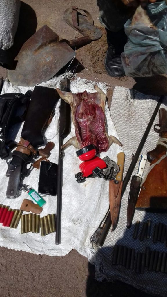 Caças, armas e munições foram apreendidas