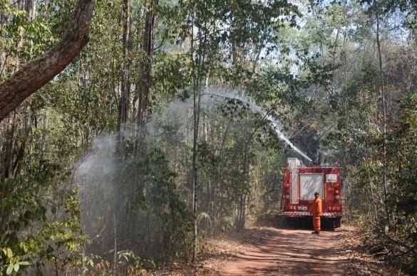 Corpo de Bombeiros tenta impedir avanço de fogo