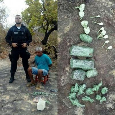 Polícia prende um dos principais traficantes de Castelo do Piauí