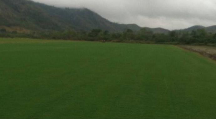 Novo gramado do Maracanã será colocado no estádio em breve (Crédito: Globoesporte.com)