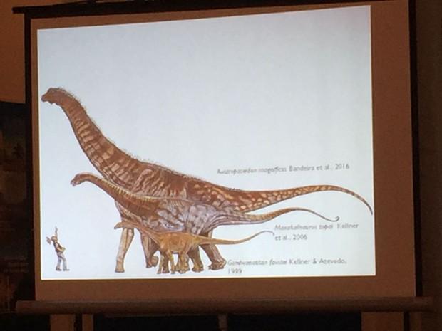 Animal pode ser classificado no grupo dos titanossauros