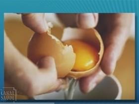 Comer casca de ovo pode fortalecer os ossos? veja!