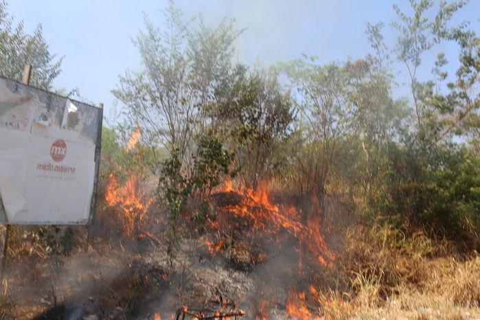 Incêndio às margens da Avenida dos Ipês assusta moradores (Crédito: Efrém Ribeiro)