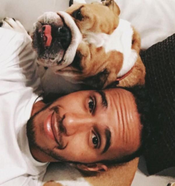 Lewis Hamilton congela esperma de seu bulldog antes de castrá-lo